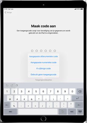 Apple ipad-pro-11-inch-2018-model-a1934 - Instellingen aanpassen - Activeer het toestel en herstel jouw iCloud-data - Stap 14