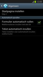 Samsung N7100 Galaxy Note II - Internet - buitenland - Stap 20