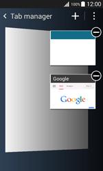 Samsung G388F Galaxy Xcover 3 - Internet - Internet browsing - Step 12