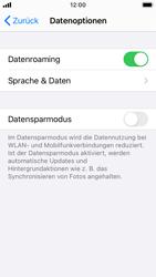 Apple iPhone SE - iOS 14 - Internet und Datenroaming - Deaktivieren von Datenroaming - Schritt 5