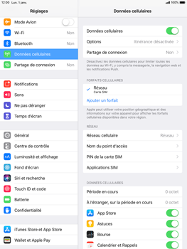 Apple iPad Pro 9.7 - iOS 12 - Internet - configuration manuelle - Étape 5
