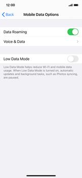 Apple iPhone XS - iOS 14 - Internet and data roaming - Disabling data roaming - Step 5
