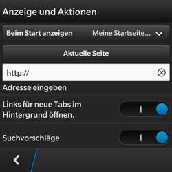 BlackBerry Q5 - Internet - Apn-Einstellungen - 20 / 22