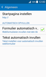 Samsung G388F Galaxy Xcover 3 - Internet - handmatig instellen - Stap 27