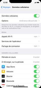 Apple iPhone X - Internet et roaming de données - Comment vérifier que la connexion des données est activée - Étape 5