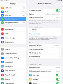 Apple iPad mini (2019) - iPadOS 13 - Internet - Configuration manuelle - Étape 4
