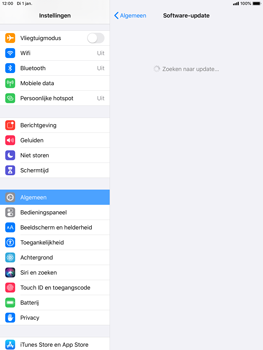 Apple ipad-air-2-met-ipados-13-model-a1567 - Software updaten - Update installeren - Stap 5