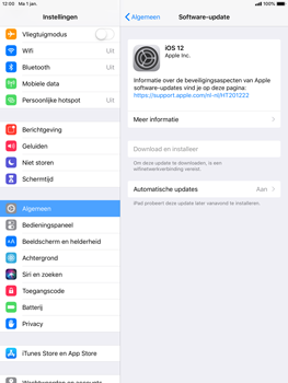 Apple ipad-air-ios-12 - Software updaten - Update installeren - Stap 6