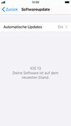 Apple iPhone SE - iOS 13 - Software - Installieren von Software-Updates - Schritt 6