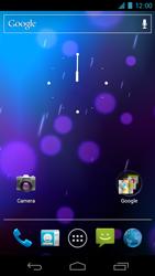 Samsung I9250 Galaxy Nexus - Internet - Handmatig instellen - Stap 1