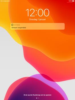 Apple iPad mini 4 - iPadOS 13 - Internet - handmatig instellen - Stap 13