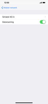 Apple iPhone XR - Internet - Dataroaming uitschakelen - Stap 5