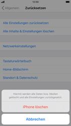 Apple iPhone 6s - iOS 13 - Gerät - Zurücksetzen auf die Werkseinstellungen - Schritt 6