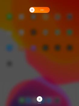 Apple iPad Pro 12.9 (1st gen) - ipados 13 - Internet et roaming de données - Configuration manuelle - Étape 10