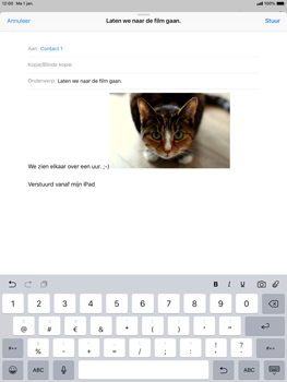 Apple ipad-pro-10-5-inch-ios-12 - E-mail - Bericht met attachment versturen - Stap 12