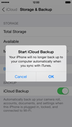 Apple iPhone 5s - Applications - Configuring the Apple iCloud Service - Step 13
