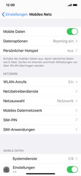 Apple iPhone X - iOS 13 - Ausland - Auslandskosten vermeiden - Schritt 6