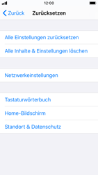Apple iPhone SE - iOS 13 - Fehlerbehebung - Handy zurücksetzen - Schritt 7