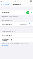 Apple iPhone SE - iOS 13 - Bluetooth - Collegamento dei dispositivi - Fase 6