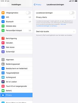 Apple iPad Pro (9.7) - iPadOS 13 - Toestel - stel
