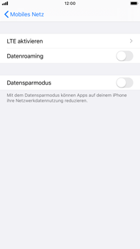 Apple iPhone 6s Plus - iOS 13 - Ausland - Im Ausland surfen – Datenroaming - Schritt 7