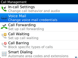 BlackBerry 9360 Curve - Voicemail - Manual configuration - Step 5