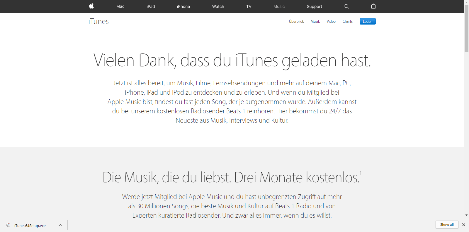 Apple iPhone 6 - Apps - iTunes installieren - 4 / 11
