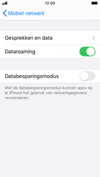 Apple iPhone SE - iOS 13 - Internet - Dataroaming uitschakelen - Stap 5