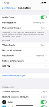 Apple iPhone 12 Pro - Internet und Datenroaming - Deaktivieren von Datenroaming - Schritt 4