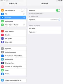 Apple iPad Mini 3 - iOS 12 - Bluetooth - koppelen met ander apparaat - Stap 8