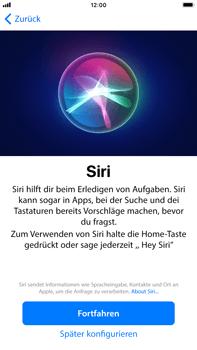 Apple iPhone 6 Plus - iOS 11 - Persönliche Einstellungen von einem alten iPhone übertragen - 22 / 31