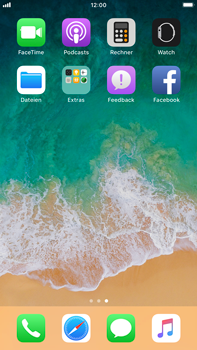 Apple iPhone 6 Plus - iOS 11 - Automatisches Ausfüllen der Anmeldedaten - 1 / 1