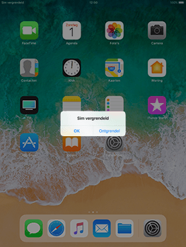 Apple iPad Air iOS 11 - Internet - handmatig instellen - Stap 15