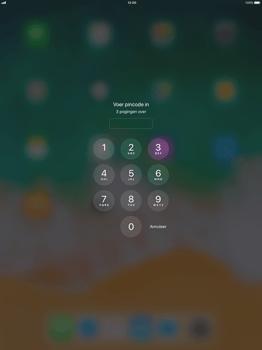 Apple iPad Pro 12.9 (1st gen) - iOS 11 - Internet - Handmatig instellen - Stap 15