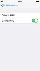 Apple iPhone SE - iOS 12 - Internet - Dataroaming uitschakelen - Stap 5