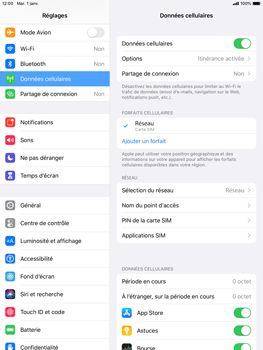 Apple iPad mini (2019) - iPadOS 13 - Internet et roaming de données - Désactivation du roaming de données - Étape 4
