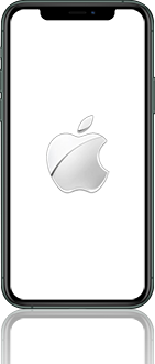 Apple iphone-11-pro-max-model-a2218