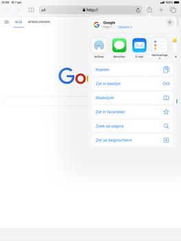 Apple ipad-mini-5-7-9-inch-2019-model-a2124-ipados-13 - Internet - Hoe te internetten - Stap 17