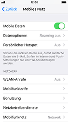 Apple iPhone SE - Netzwerk - Netzwerkeinstellungen ändern - 4 / 7