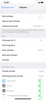 Apple iPhone XS Max - Internet e roaming dati - Come verificare se la connessione dati è abilitata - Fase 4