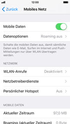 Apple iPhone SE - Ausland - Im Ausland surfen – Datenroaming - 2 / 2