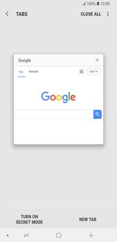 Samsung Galaxy S9 Plus - Internet - Internet browsing - Step 13