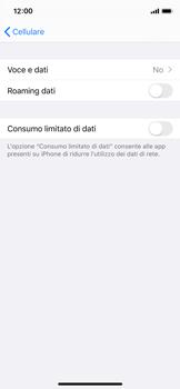 Apple iPhone XS - iOS 13 - Rete - Come attivare la connessione di rete 4G - Fase 5