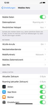 Apple iPhone XS Max - Ausland - Auslandskosten vermeiden - Schritt 6