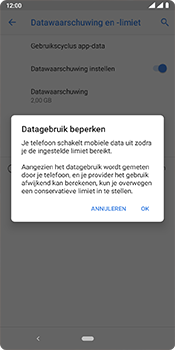 Nokia 3.1 Plus - Android Pie - internet - mobiele data managen - stap 13
