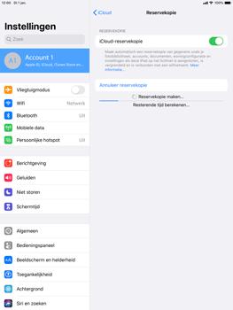 Apple iPad Air (2019) - iPadOS 13 - Data - maak een back-up met je account - Stap 13