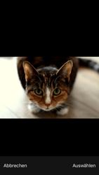 Apple iPhone 6s - MMS - Erstellen und senden - Schritt 14