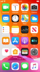 Apple iPhone SE - iOS 13 - WiFi - Enable WiFi Calling - Step 3