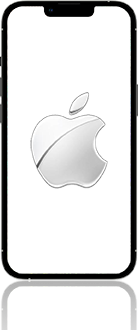 Apple iPhone-13-Pro-Max-5G-Model-A2643