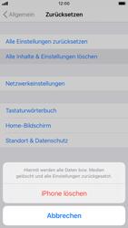 Apple iPhone SE (2020) - iOS 14 - Gerät - Zurücksetzen auf die Werkseinstellungen - Schritt 6
